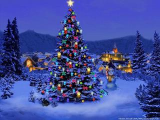 Christmas-Tree-Nature1024-226431.jpg