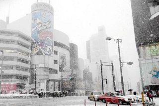yuki_tokyo.jpg